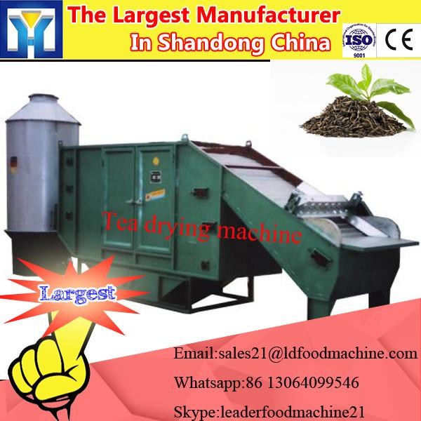 Vacuum fryer vegetables and fruits chips (apple/green radish/carrot/onion, potato, sweet #1 image