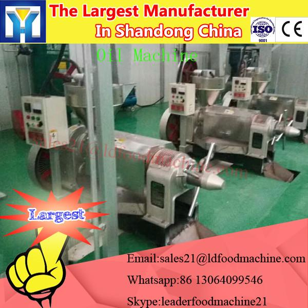 LD Easy And Simple Handle Palm Kernel Oil Press Machine #1 image