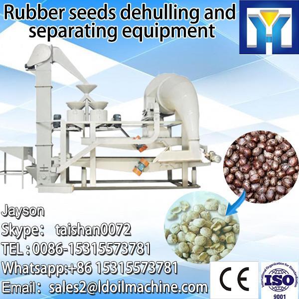 6YL Series hemp seed oil press machine #1 image