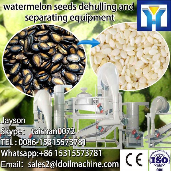 6YL Series sunflower seeds screw oil press machine #1 image