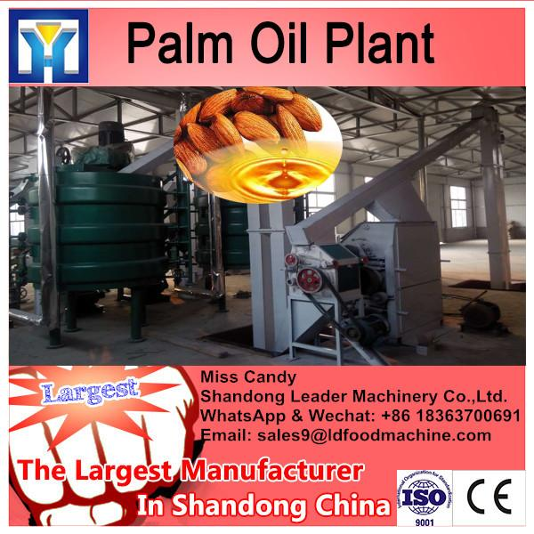 Imput 2tons raw materials sunflower oil extraction equipment #1 image