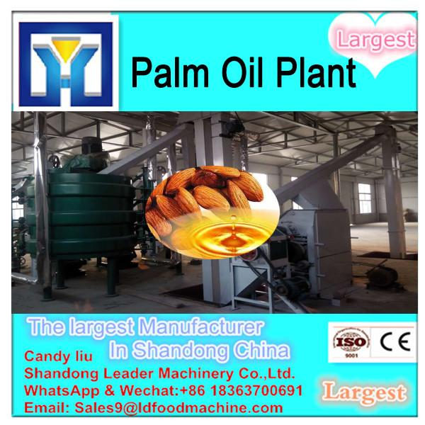 Imput 2tons raw materials sunflower oil extraction equipment #2 image