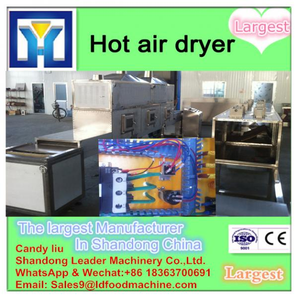 Mint leaf multiple layer stainless steel conveyor dryer #1 image