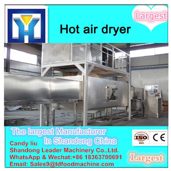 Mint leaf multiple layer stainless steel conveyor dryer #3 image