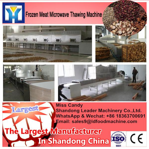 China supplier conveyor belt microwave thawing machine for chicken #1 image